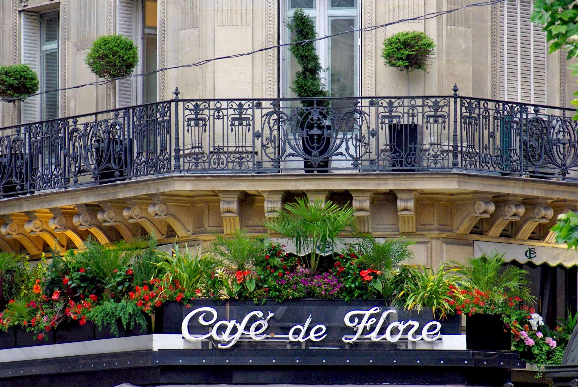 Café de Flore © French Moments