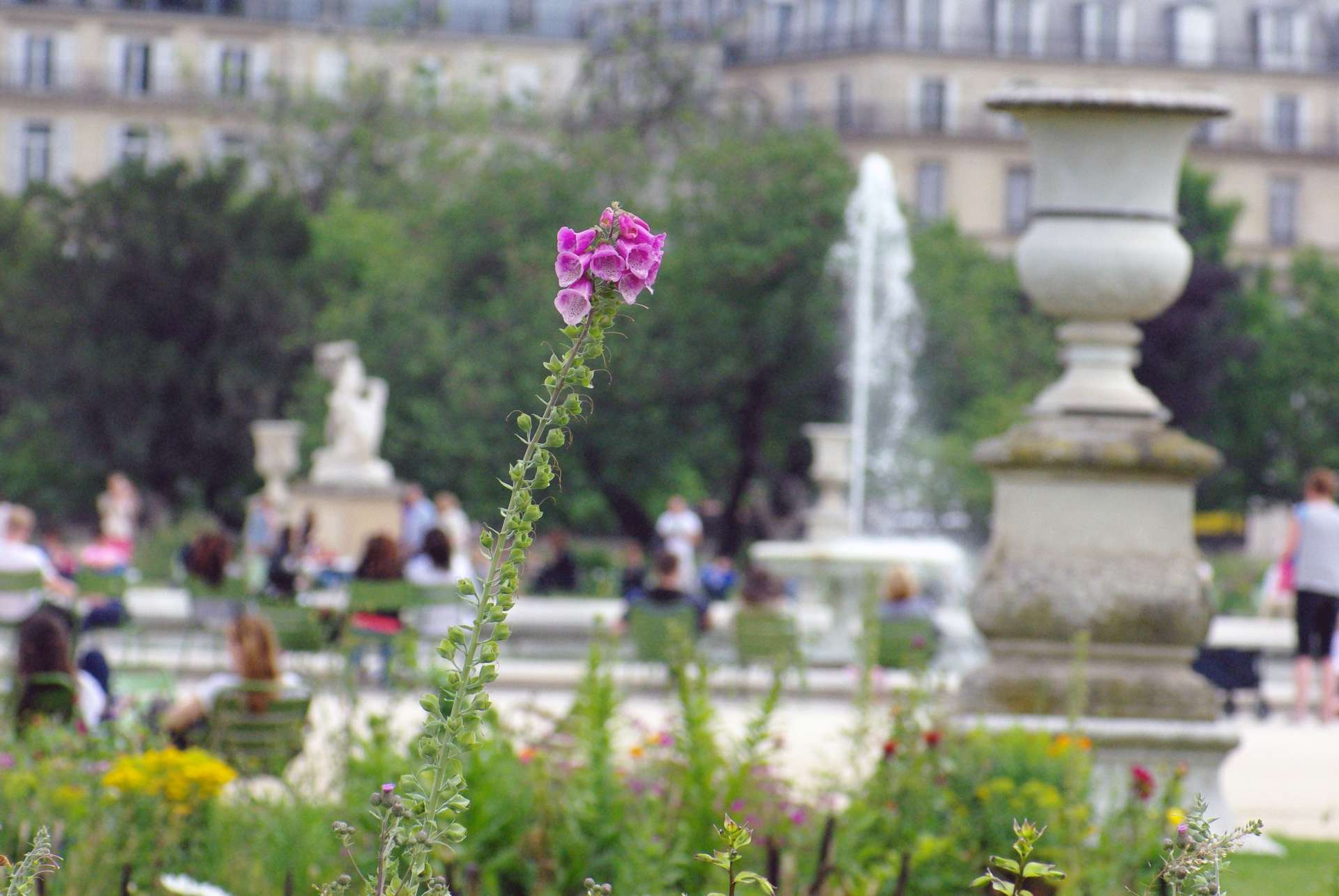 Monumental Paris Tuileries Garden © French Moments