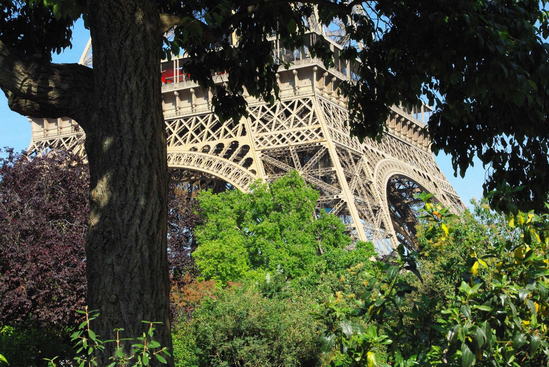 Champ de Mars and Eiffel Tower 02 © French Moments