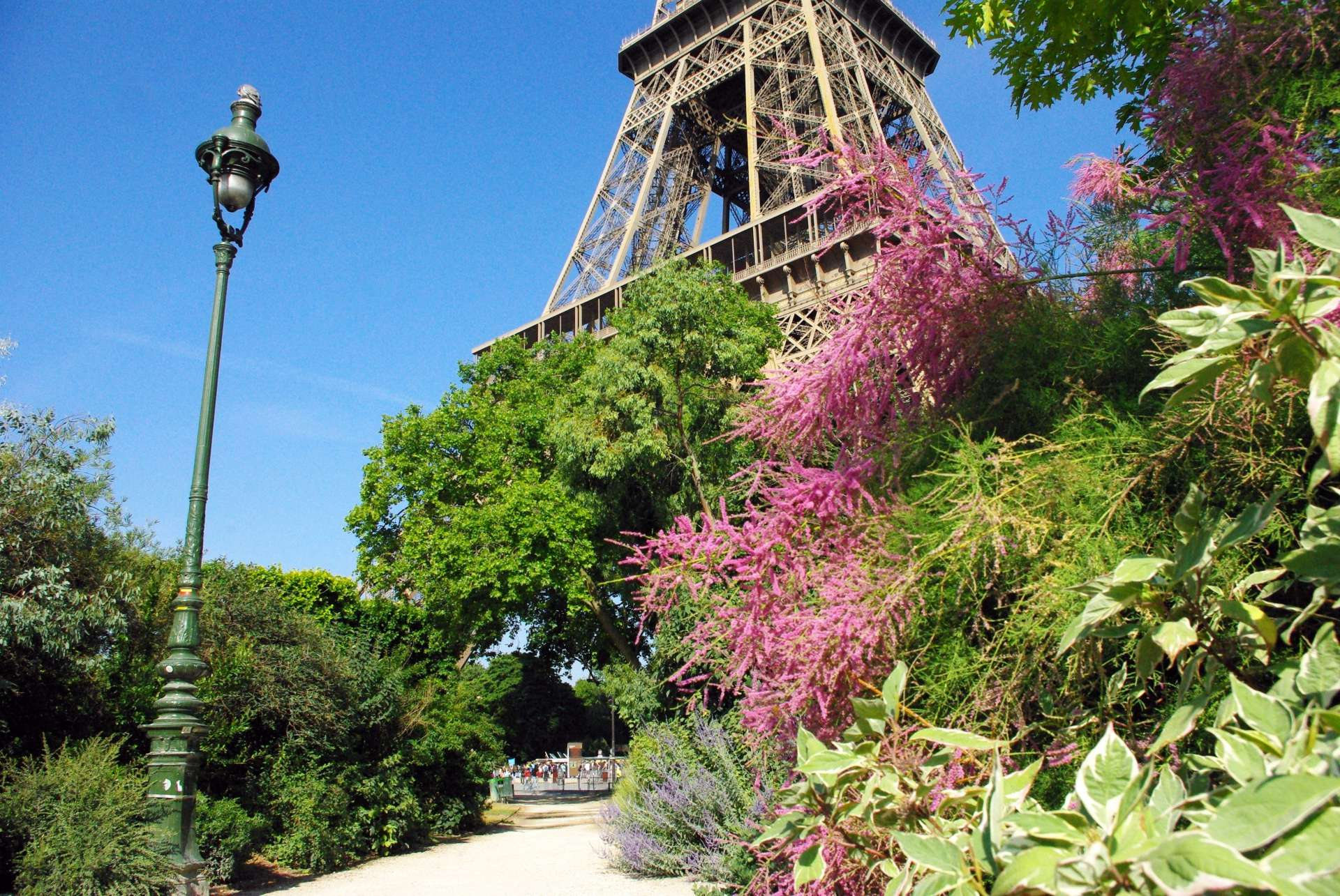 Champ de Mars and Eiffel Tower 03 © French Moments