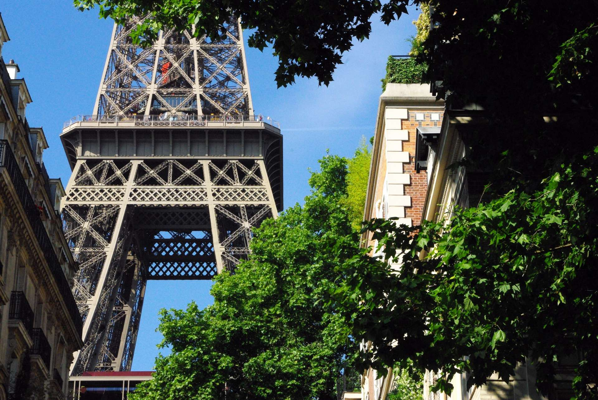 Rue de l'Université and Eiffel Tower © French Moments