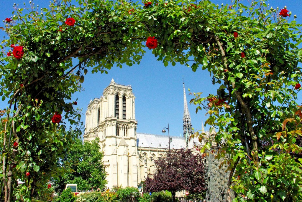 Notre-Dame des Roses © French Moments